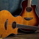 Harga Gitar Akustik Yamaha Original