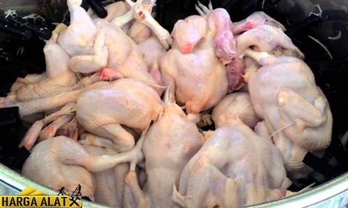 Harga Mesin Cabut Bulu Ayam